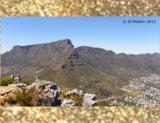 Table Mountain vom Lion's Head
